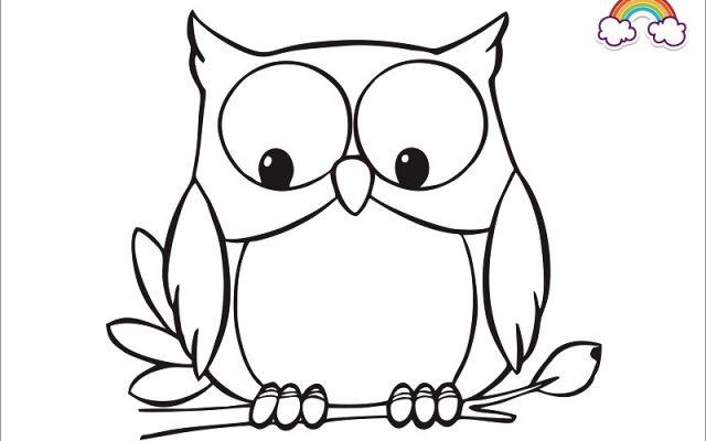 Mewarnai Gambar Anak Burung Hantu