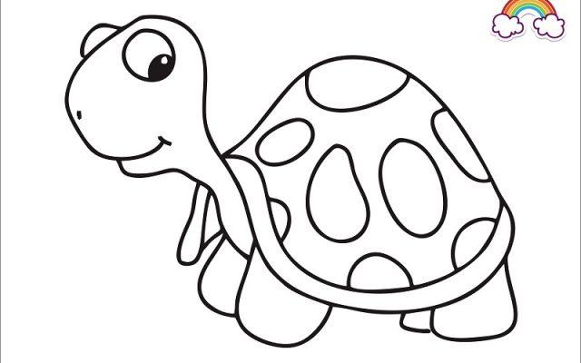 Mewarnai Gambar Kura-Kura Raksasa Aldabra